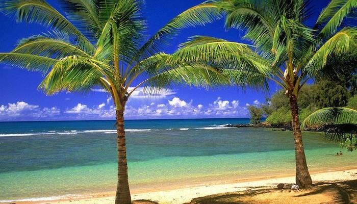 Sarasota, a praia que é um paraíso na Florida